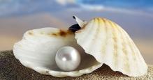 perla.jpg