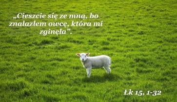 24_Zaginiona_owca.jpg