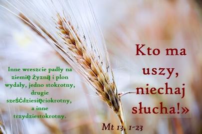 XVNZ_12.07.2020.jpg